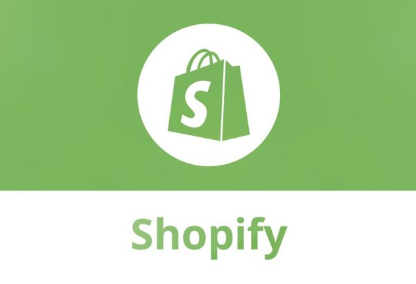 dropship custom shopify store
