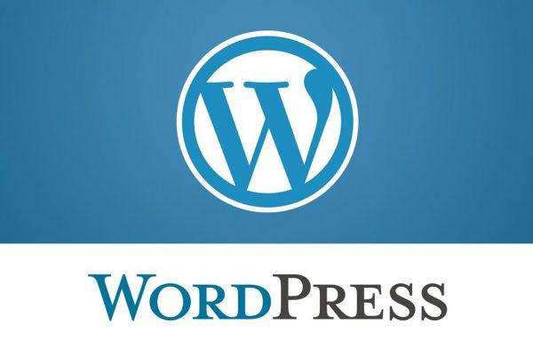 Dropship custom wordpress website